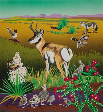 "<h5>Pronghorn, West Texas</h5><p>24 x 22 ""  Lithograph</p>"