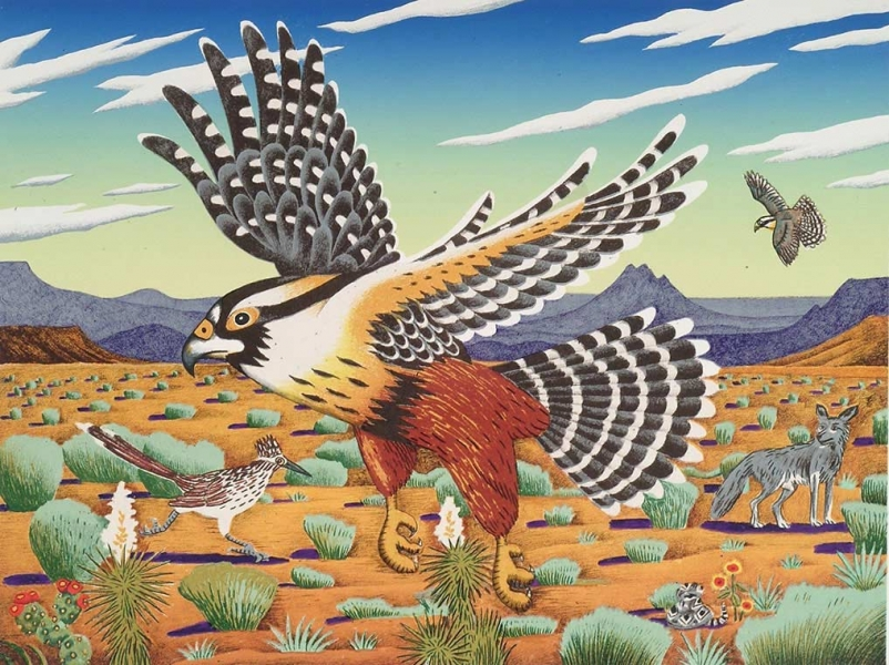 "<h5>Aplomado Falcon, West Texas</h5><p>Audubon Avian Art Series<br> 18 x 24 ""  Lithograph</p>"
