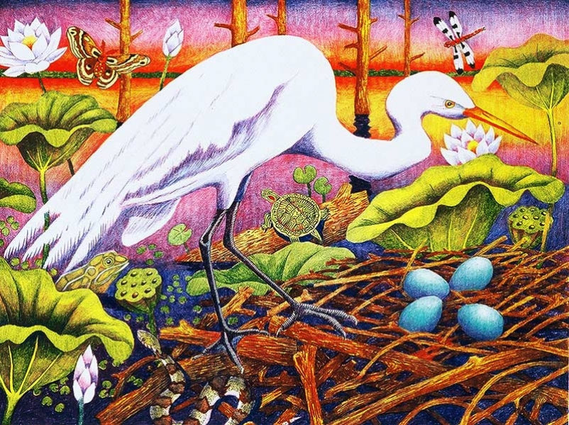 "<h5>Great Egret with Four Blue Eggs</h5><p>Audubon Avian Art Series<br> 18 x 24 ""  Lithograph</p>"