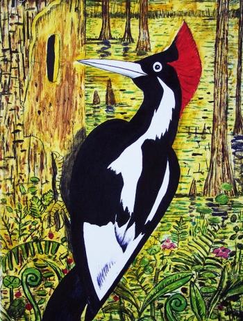 "<h5>Ivory-Billed Woodpecker</h5><p>48 x 48 ""  Monoprint</p>"