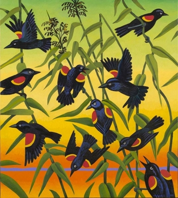 "<h5>Redwing-Blackbirds and wild rice</h5><p>40 x 36 ""Oil on canvas</p>"