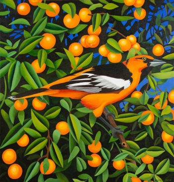 "<h5>Tangerines</h5><p>50 x 48 ""Oil on canvas</p>"