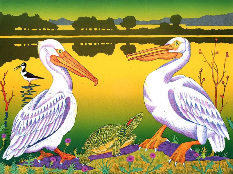 "<h5>White Pelicans, Mitchell Lake</h5><p>Audubon Avian Art Series<br> 18 x 24 ""  Lithograph</p>"